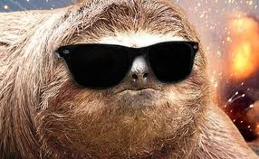 awesome sloth