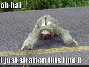 editing sloth